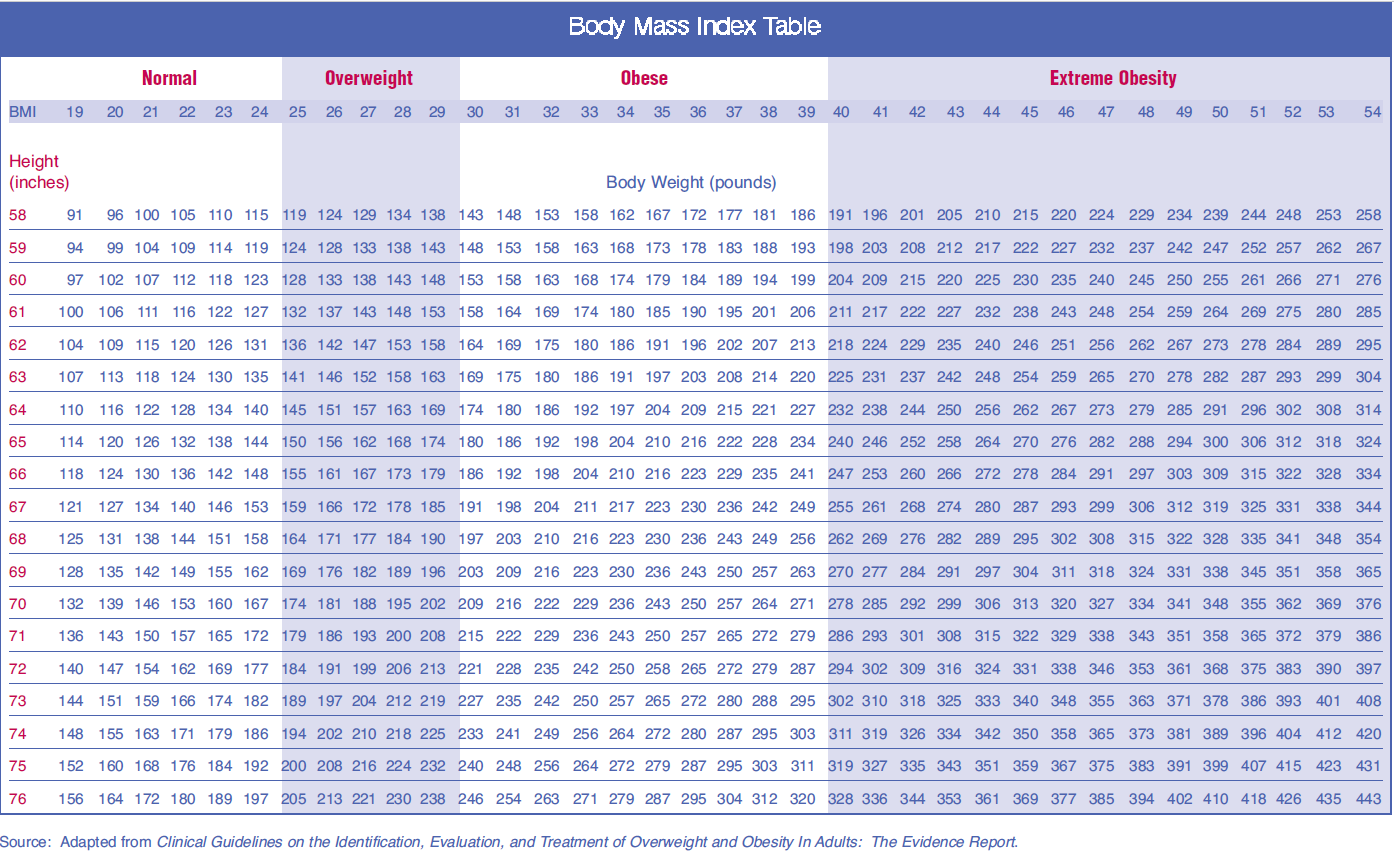 BMI Guide - Body Mass Index to Monitor, Track Fitness